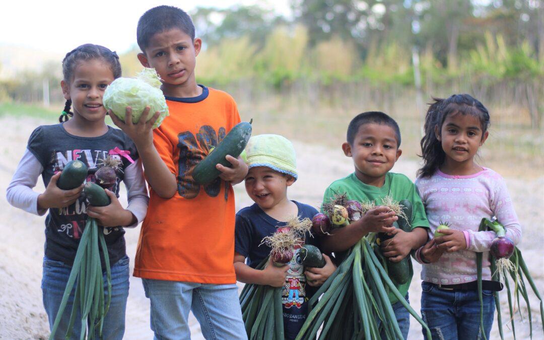 NPH Honduras: liderando el camino en proyectos de desarrollo sostenible